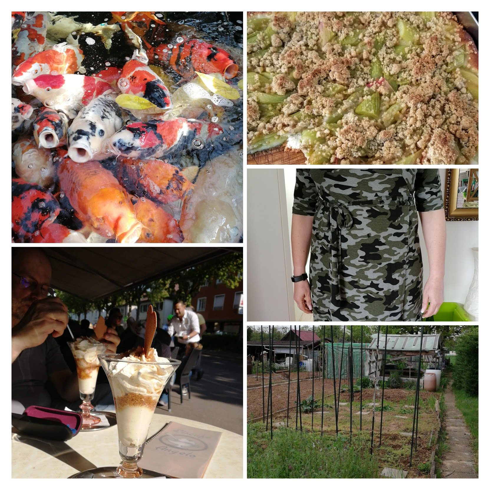 img_20190422_144810-collage